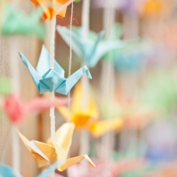 TumblrShare On Email 1000 Paper Cranes Backdrop