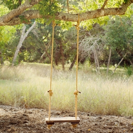 Rustic Wood And Rope Tree Swing