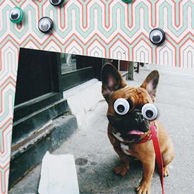 googly eyes gallery craftgawker