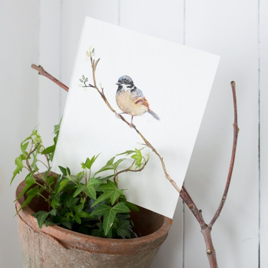 Free Spring bird printable