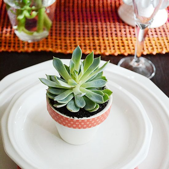 DIY Pretty Succulent Table Decor