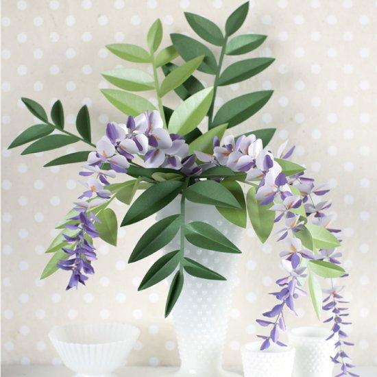 Paper Wisteria Plant
