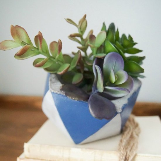 Colorblocked Cement Planter