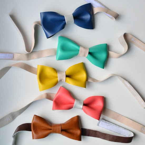 Colorful and Bright Bow Ties
