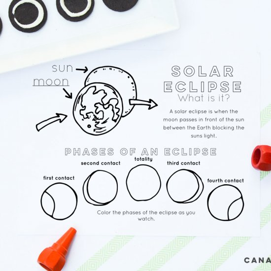 Eclipse Activities and Free Print